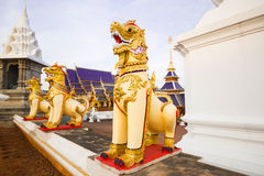 Singha statue in the temple Royalty Free Stock Photography