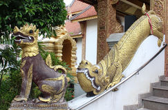 Singha statue. Stock Images