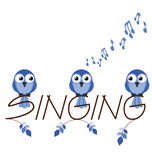Singing Stock Photos