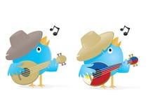 Singing Bird. Birds singing and playing ukulele Royalty Free Stock Photo