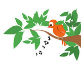 Singing bird on tree. Vector Royalty Free Stock Images