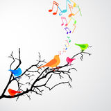 Singing Birds Stock Photo