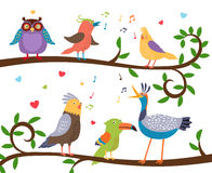 Singing birds on tree branches. Variety of colorful birds sitting on a tree branch with leaves and tweeting. Vector illustration royalty free illustration