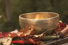 Singing bowl made of seven metals. Surrounded of colorful autumn Royalty Free Stock Images