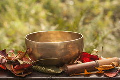 Singing bowl made of seven metals surrounded of colorful autumn. Leaves Stock Image