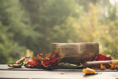 Singing bowl made of seven metals. Surrounded of colorful autumn leaves Royalty Free Stock Image