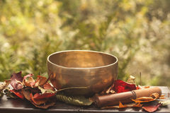 Singing bowl made of seven metals Royalty Free Stock Image