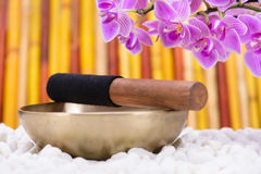 Singing bowl in zen garden Royalty Free Stock Photos