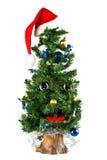 Singing Christmas fur-tree Stock Photography