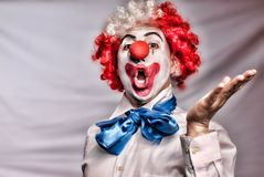 Singing clown. With a red nose on a white backround Royalty Free Stock Image