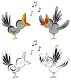Singing  crows Stock Image