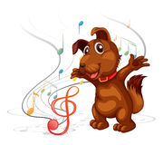 The singing dog Stock Images