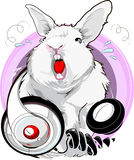 Singing rabbit Royalty Free Stock Images
