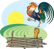 Singing Rooster and morning Sun. Vector illustration Stock Illustration