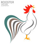 Singing rooster. Vector illustration (EPS 10&#x29 Royalty Free Stock Image