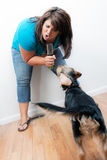 Singing to the Dog Royalty Free Stock Image