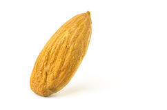 Single almond Royalty Free Stock Images