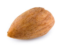 Single almond nut Royalty Free Stock Photo