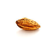 Single almond nut with shell Royalty Free Stock Photo