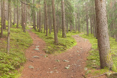 A single alpine path splits in two different directions. It's an. Autumnal cloudy day Stock Photos