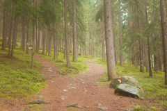 A  single alpine path splits in two different directions. It's an. A single alpine path splits in two different directions. It's an autumnal cloudy day Royalty Free Stock Photos