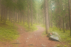A single alpine path splits in two different directions. It's an. A single alpine  path splits in two different directions. It's an autumnal cloudy day Royalty Free Stock Photo