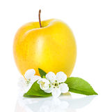 Single  apple with leaf and flowers Stock Photo