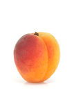 Single apricot Royalty Free Stock Photography