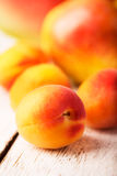 Single apricot Stock Image