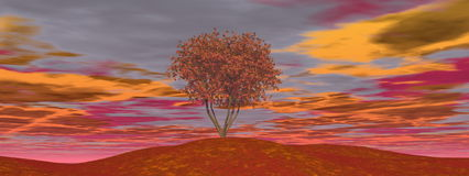 Single autumn tree - 3D render. Single autumn tree by cloudy sunset - 3D render Stock Photography
