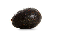 Single Avocado Royalty Free Stock Photos