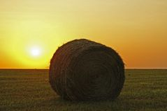 Single bale of hay Royalty Free Stock Photography