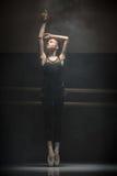 Single ballet dancer Stock Image