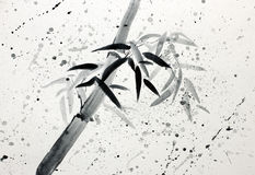 Single bamboo and raindrops Stock Images