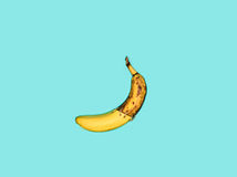 Single banana against blue background Stock Photography