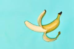 Single banana against blue background Stock Images