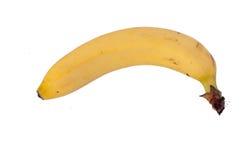 Single banana against white background. Single natural banana against isolated on white background royalty free stock photo