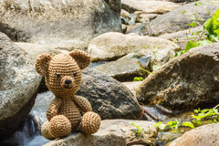 Single bear doll on nature background Stock Photos