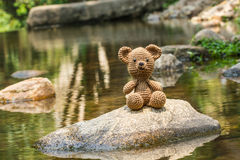 Single bear doll on nature background Royalty Free Stock Image