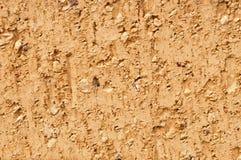 Single Beige Brick Background Stock Photography