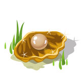Single beige pearl in a Golden shell grass Stock Photo