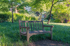 Single bench in the park. A single bench isolated in the park with green background Royalty Free Stock Images