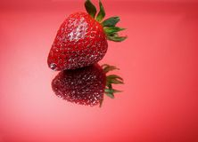 Single Berry Stock Photography