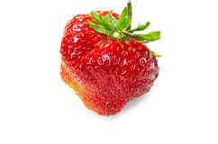 Single big strawberry Royalty Free Stock Photos