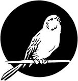 Single Bird Stock Photos