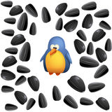 Single bird with seeds Stock Photos