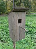 Single birdhouse in the forest Royalty Free Stock Image