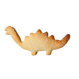 Single biscuit. Royalty Free Stock Image