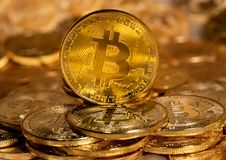 Free Single Bitcoin Coin Standing On Top Of Other Gold Coins Royalty Free Stock Images - 118891479