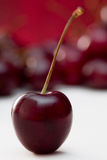 Single black cherry Royalty Free Stock Images